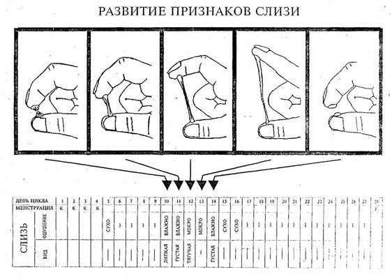 chto-videlyaetsya-iz-vlagalisha